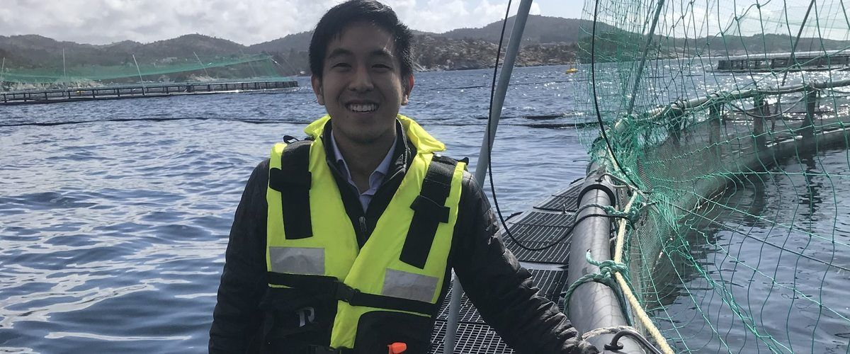 Bryton Shang (pictured) and his team are developing software that can count the sea lice on farmed salmon, as well as measuring biomass and fish appetite.