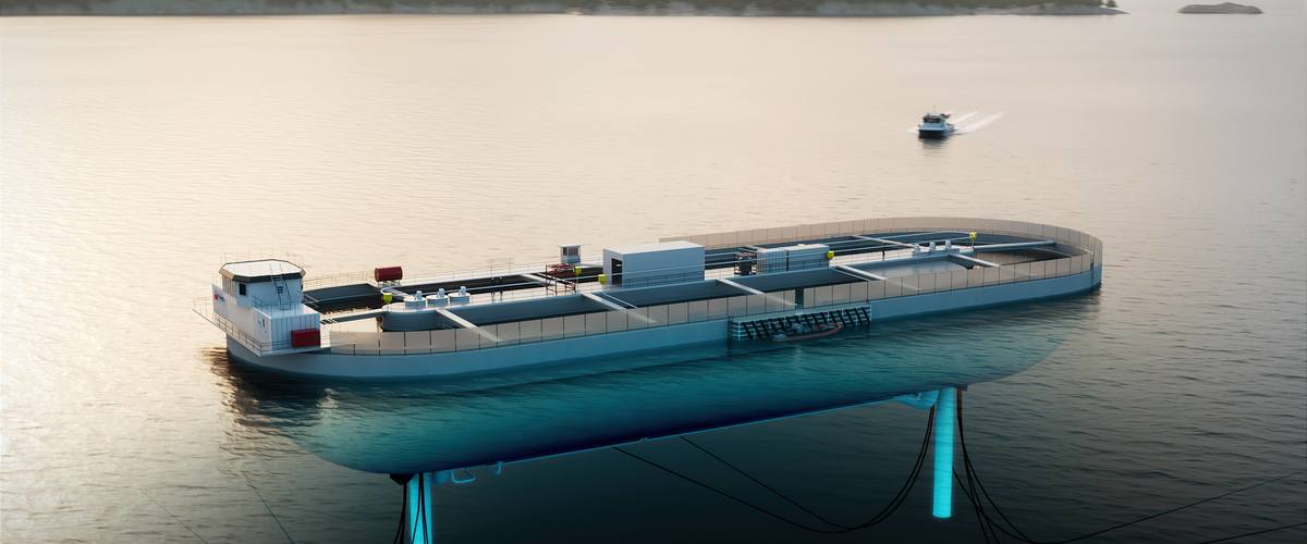 The Stadion Basin - the next level of fish farming. (Illustration: Nagelld)