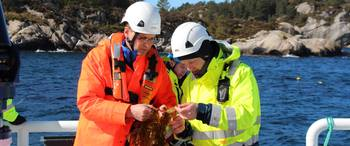 Harald Sveier, CEO of Ocean Forest (left), together with Anders Karlsson-Drangsholt from Bellona. Photo © Lerøy