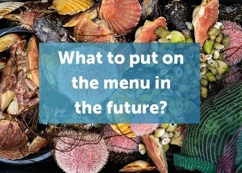 There is a big seafood conference in Bergen 26-27 October. Main focus: sustainability.